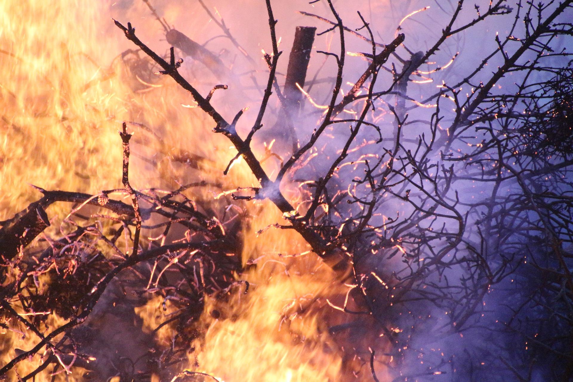 Przeciwpożarowe ABC, czyli jak się zachować w przypadku pożaru? Część pierwsza